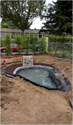 Conception Et Création Dun Bassin Dornement à Villefranche Sur